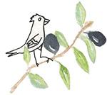 bird_on_sm_branch